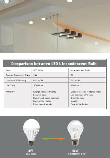 energy efficient bulbs win ecoWise award